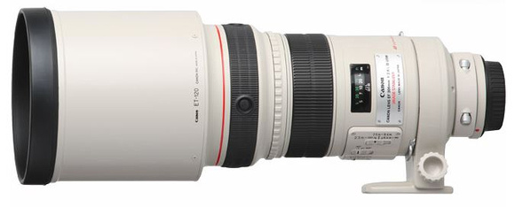 Canon EF 300mm f2.8 L IS